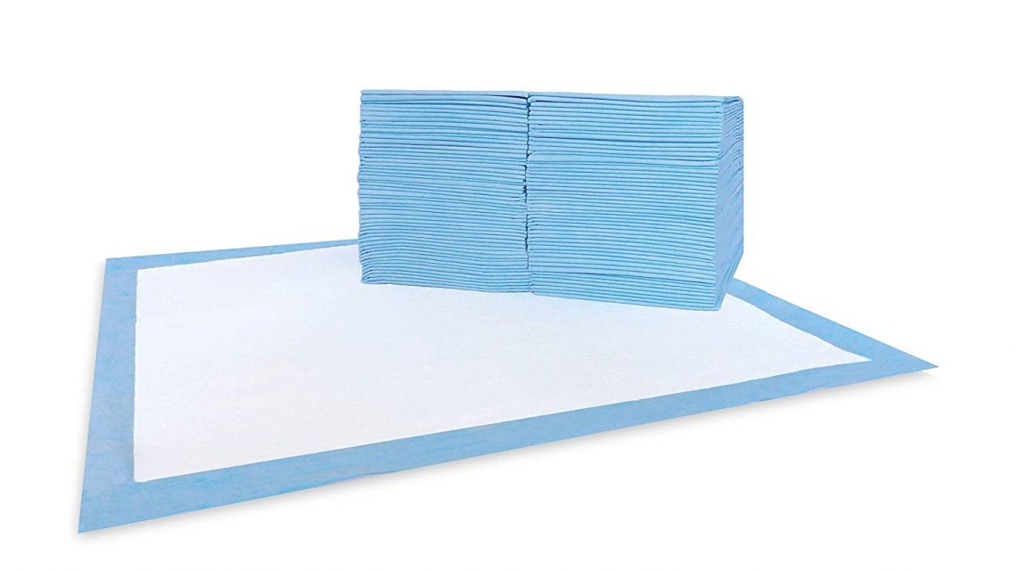 Cheap AKC Training Pads 100-pack
